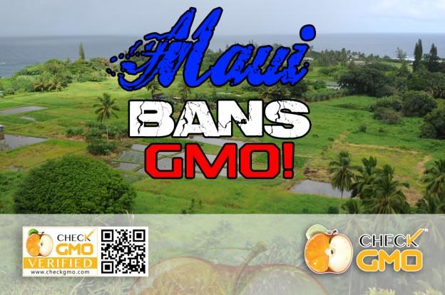 Maui Bans GMO